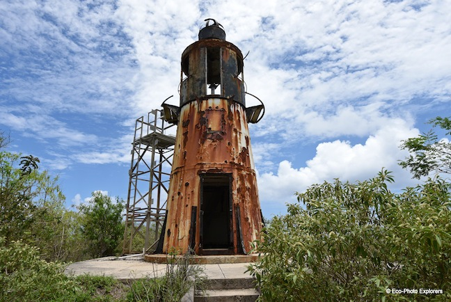 Eco-Photo Explorers - Lighthouse Image Collection